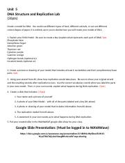 Unit 5 DNA Structure and Replication Lab (2).docx