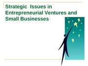 Strategic_ Issues_in_Entrepreneurial_Ventures_and_Small_Businesses