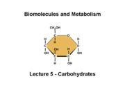 Biomolecules Lecture_5_CHO