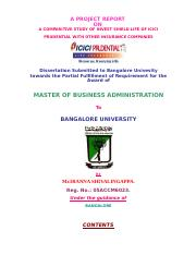 213019837-MBA-finance-project.doc