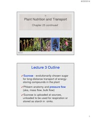 25_Plant+Nutrition+and+Transport_3note