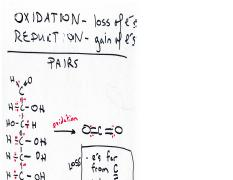 Oxidation_Reduction