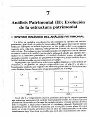 Capitulo 7 Analisis Patrimonial II