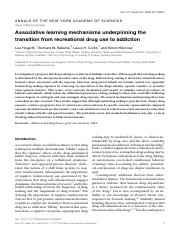 Associative learning mechanisms underpinning the transition from recreational drug use to addiction.