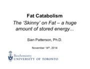 7BCH210H Fall 2014 Patterson Fat Catabolism - November 14, 2014