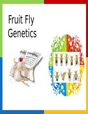 Virtual Fruit Fly Lab