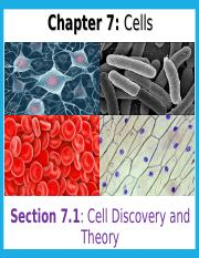 7.1 Cell Discovery and Theory (widhalm).ppt
