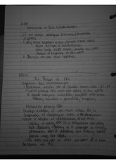 Rule Utilitarianism Lecture Notes