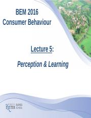Lecture 5-Perception and learning ppt.ppt