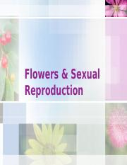 Flowers & Sexual Reproduction_F2017_NoCoevolution.pptx