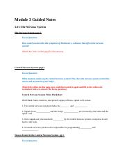 Module3GuidedNotes