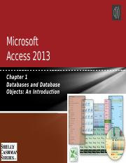 Access Chapter 1.pptm