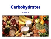 Topic 5- Carbohydrates Slides