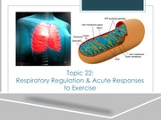 Respiratory Regulation & Acute Responses Lecture