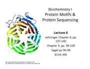 BCHE 395-6 2013 Protein Motifs and Sequencing