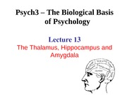 Lecture 13-Hippocampus and Amygdala