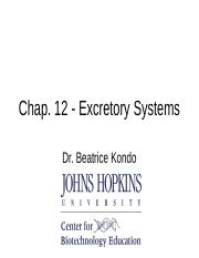 11 - Excretory Ch 12 updated.ppt
