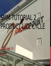 SMM Tutorial 2 – Product Life Cycle_Audrey
