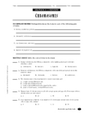Genetics worksheet section a vocabulary answer key