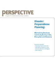 Perspective_DisasterPreparedness