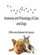 Anatomy and Physiology Skeletal Differences in cats and dogs.pdf