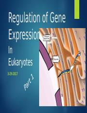 Lecture 17 & 18 Eukaryotic Gene Regulation