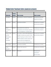 Example Task 1 Stakeholder Feedback Table