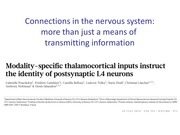 lecture_on_modality_specific_circuits_nature_july_2014_slides_as_presented_in_class