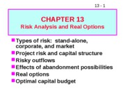 13 Risk Analysis and Real Options