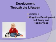 Cognitive Development in Infancy and Toddlerhood