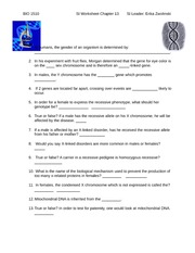 Printables Chapter 13 Worksheet chapter 13 worksheet and answer key bio 1510 si si