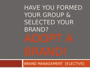 3 - Developing & Managing Brands SPRING 2013 UPDATED COPY