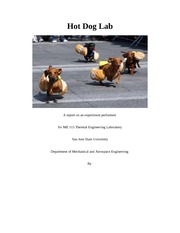 Lab 5 12 Pager  Final Document Hot Dog Anemometer