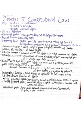 blaw 150 constitutional law and tort notes