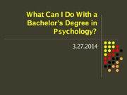 what can i do with a bachelors degreee