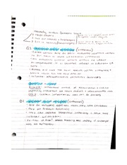 Hierarchy in Domestic Work Notes