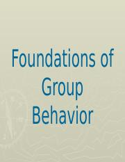 Foundations of Group Behavior chap 9