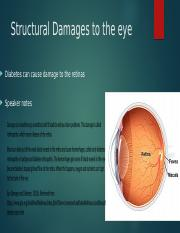 Structural Damages to the eye wanda mason.pptx