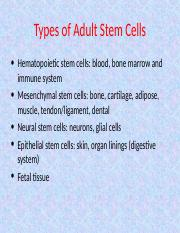 Mesenchymal stem cells.ppt