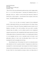 Research paper, intro to philosophy