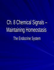 Chapter 8 - The Endocrine System (1)