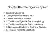 Chapter 48 The Digestive System 2011