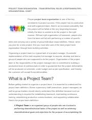 Project Team Organization – Team Definition, Roles & Responsibilities, Organizational Chart.pdf