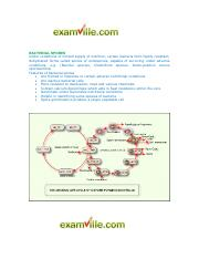 347744049-journal-bacteria-virtual-lab pdf - Bacteria What