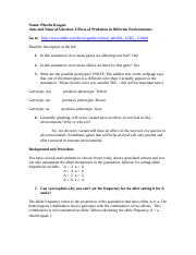 Module 7 Worksheet.doc