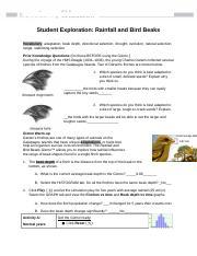 RainfallBirdBeaksSE - Name Date Student Exploration ...