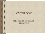 CH 3 CELLS (FUNCTION) CYTOLOGYII
