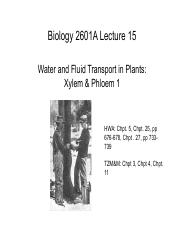 Lec15-WaterTransport-X_P1-Posted.pdf