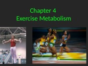 Ch 4 Exercise Metabolism