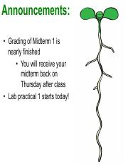 Lecture 8 Plant Reproduction